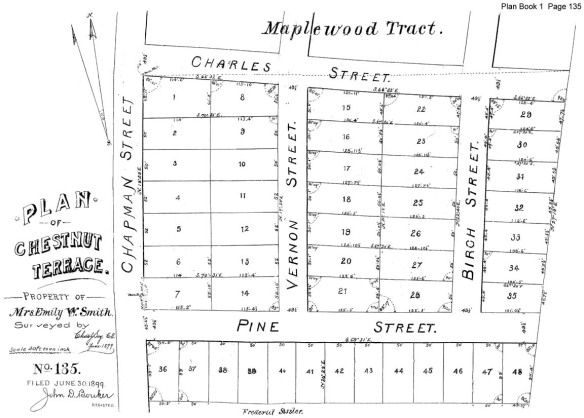 neighborhood lot map 1899 survey-web
