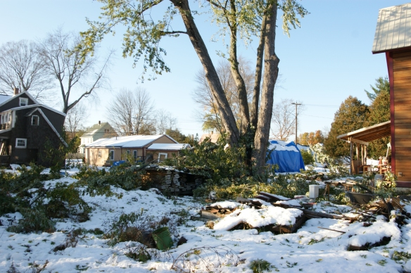 greenfield-october-2011-snow-storm-damage